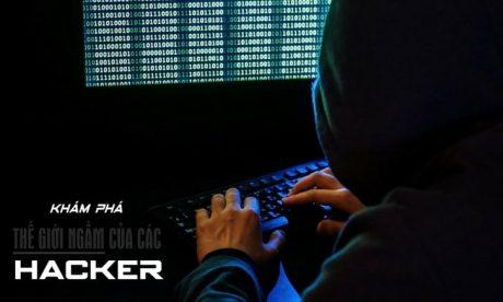 Khám Phá Thế Giới Ngầm Của Các Hacker